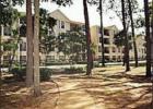 Houston Apartments For Rent